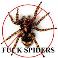 For everyone that hates Spiders and wishes they didn't exist.